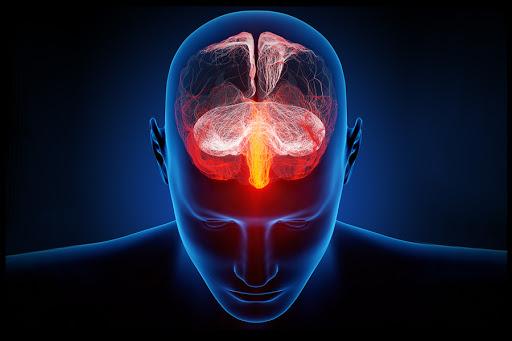 web-brain-illustration-electronic-ars-electronica-cc