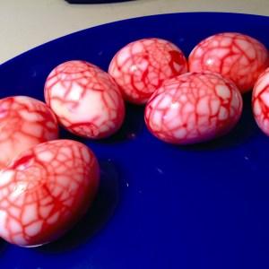 food blog spider eggs
