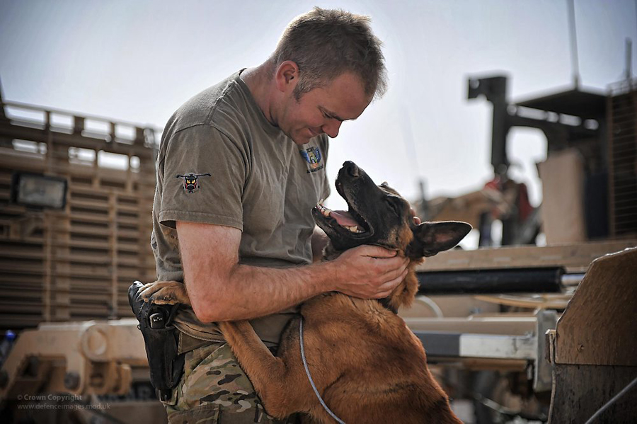 Military Working Dog and his Handler in Afghanistan