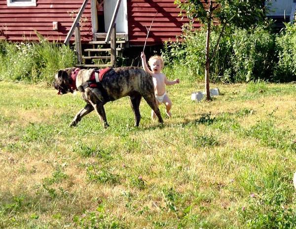 juniper and dog