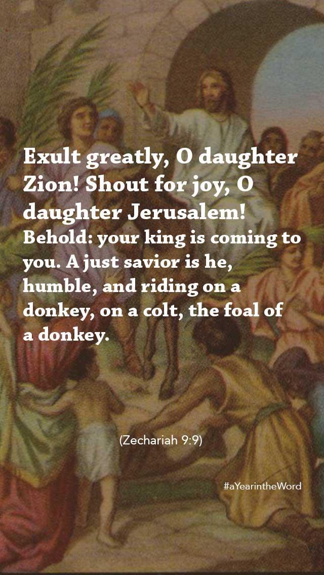 exult-greatly-daughter-zion