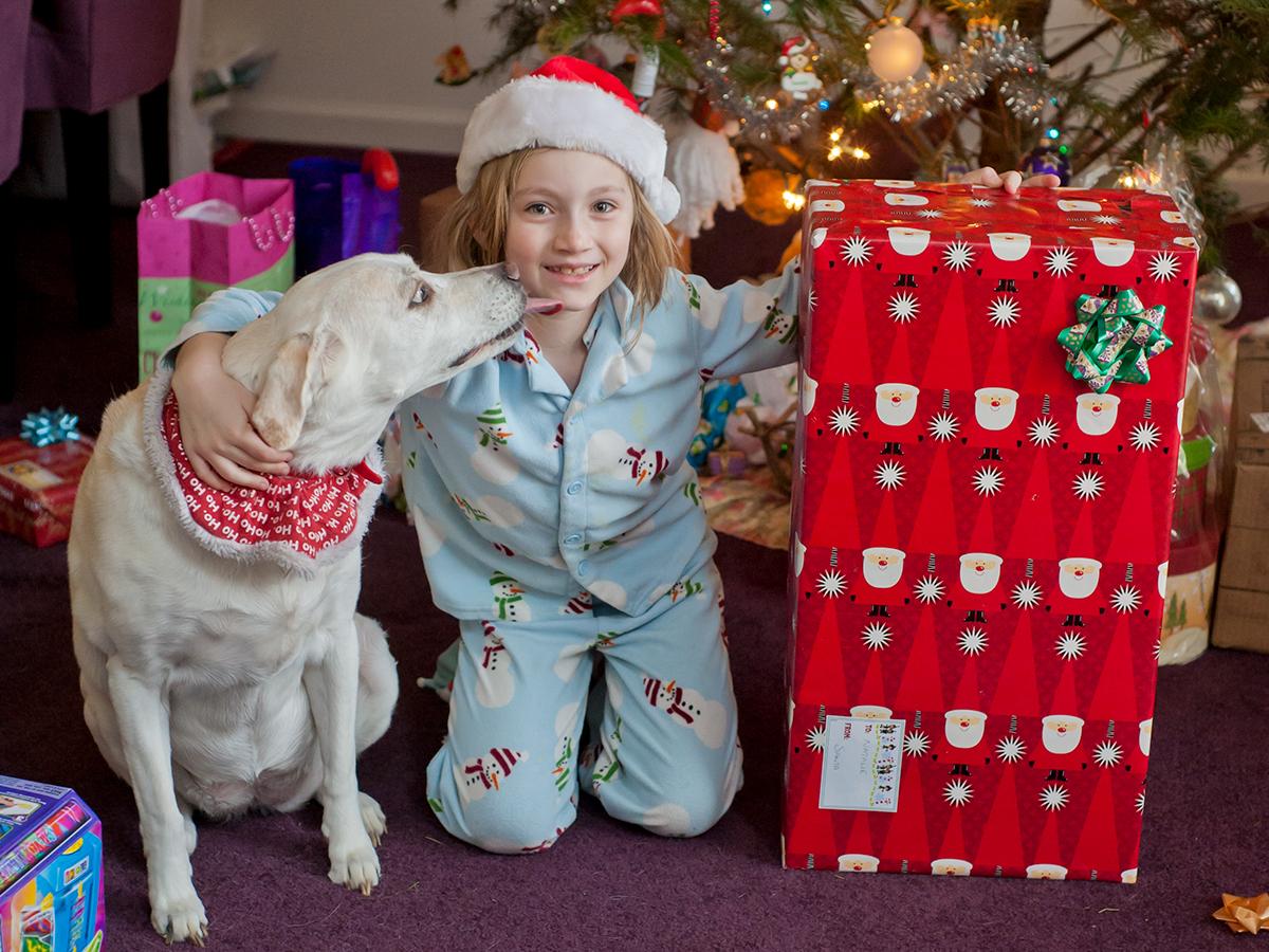 web-girl-tree-gift-christmas-dog-lisa-julia-photography