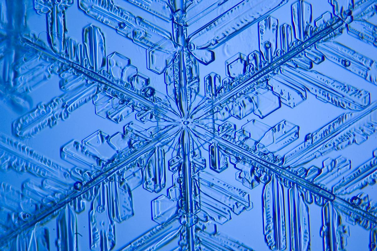 web-snowflake-006-jasper-nance-cc