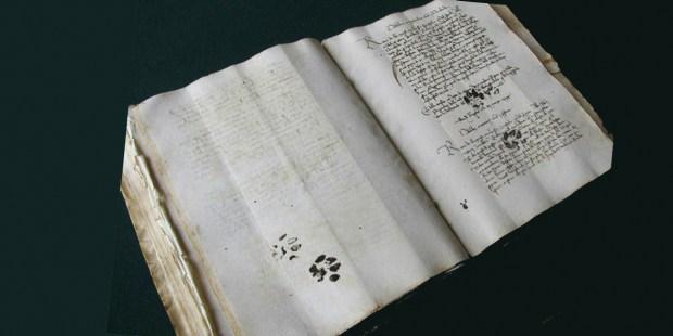 CAT PAW MANUSCRIPT
