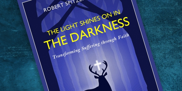 THE LIGHT SHINES ON IN DARKNESS
