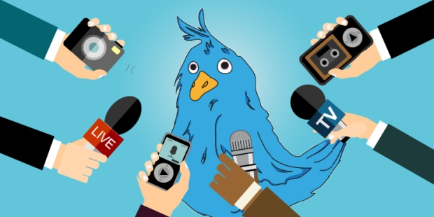 TWITTER BIRD INTERVIEW