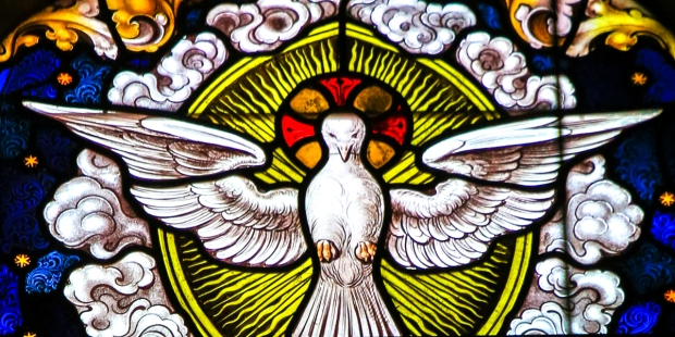DOVE IN STAINGLASS