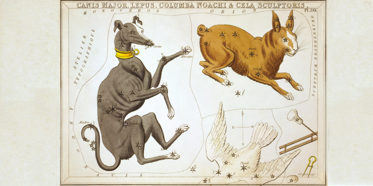CANIS MAJOR,CONSTELLATION