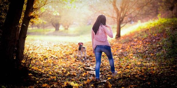 AUTUMN WALK WITH DOG