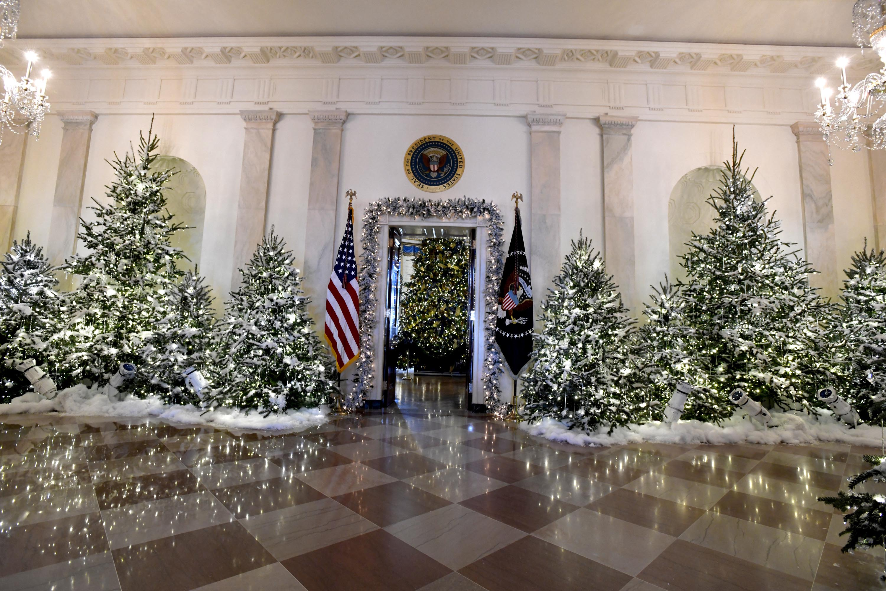 WHITE HOUSE,CHRISTMAS DECORATIONS
