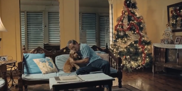 CHRISTMAS COMMERCIAL,STRAY DOG