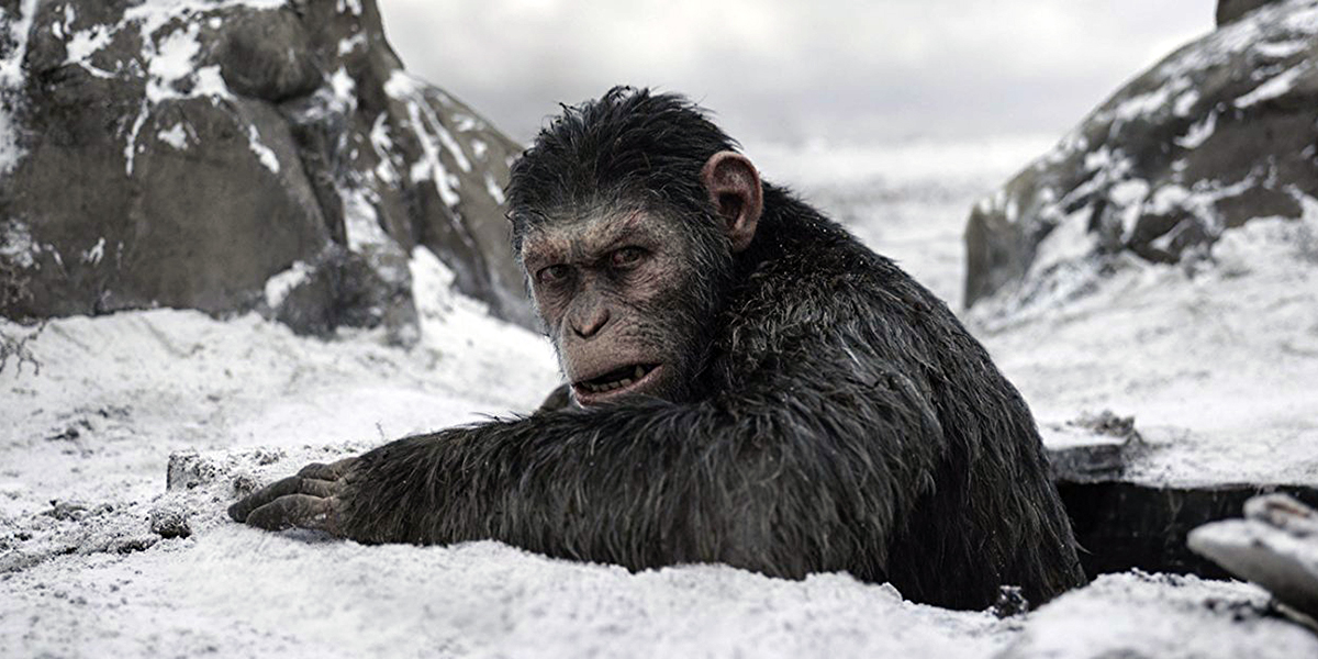 WAR FOR THE PLANET OF THE APES SCREENSHOT