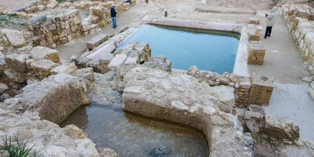 POOL DISCOVERED EIN HANYAM SITE