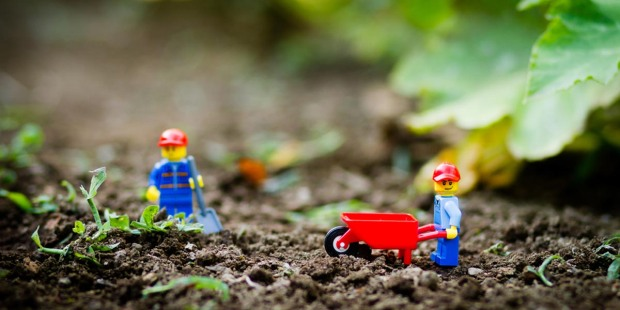 LEGO,GARDEN,SUSTAINABILITY