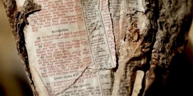 BIBLE 9/11