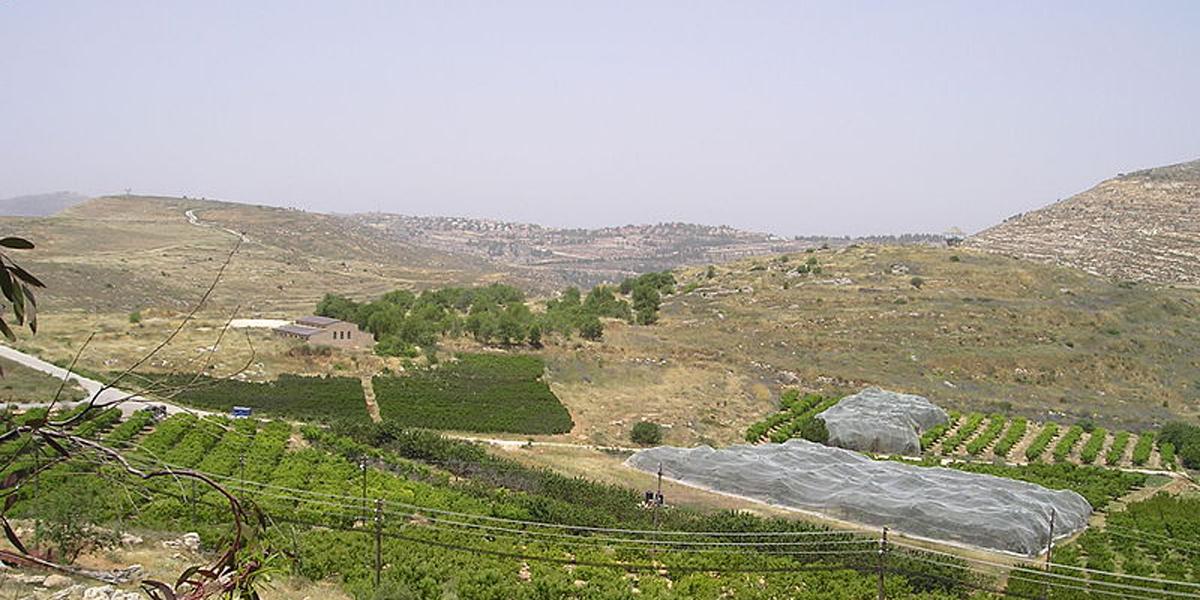 SHILOH,BIBLICAL CITY