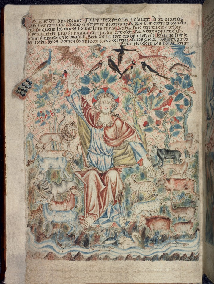 Holkham Bible