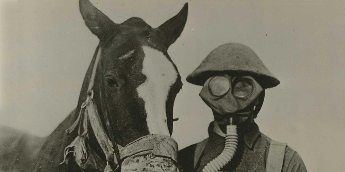 WORLD WAR 1,SOLDIER,HORSE