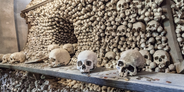 Unused bones