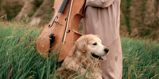 CLASSICAL MUSIC AND PETS