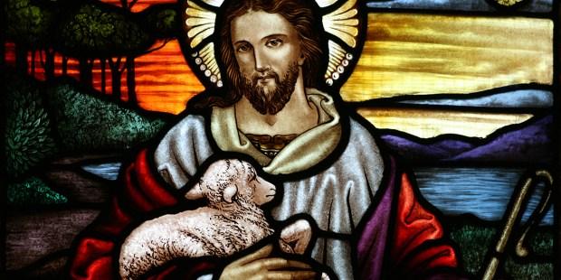 THE GOOD SHEPHARD