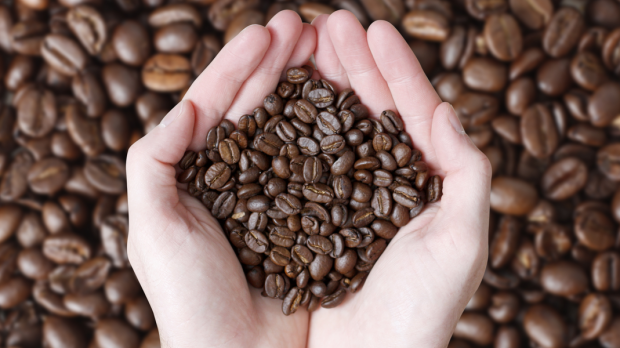 commerce équitable, café