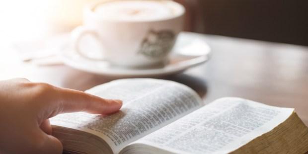 Reasons Catholics should read the Bible