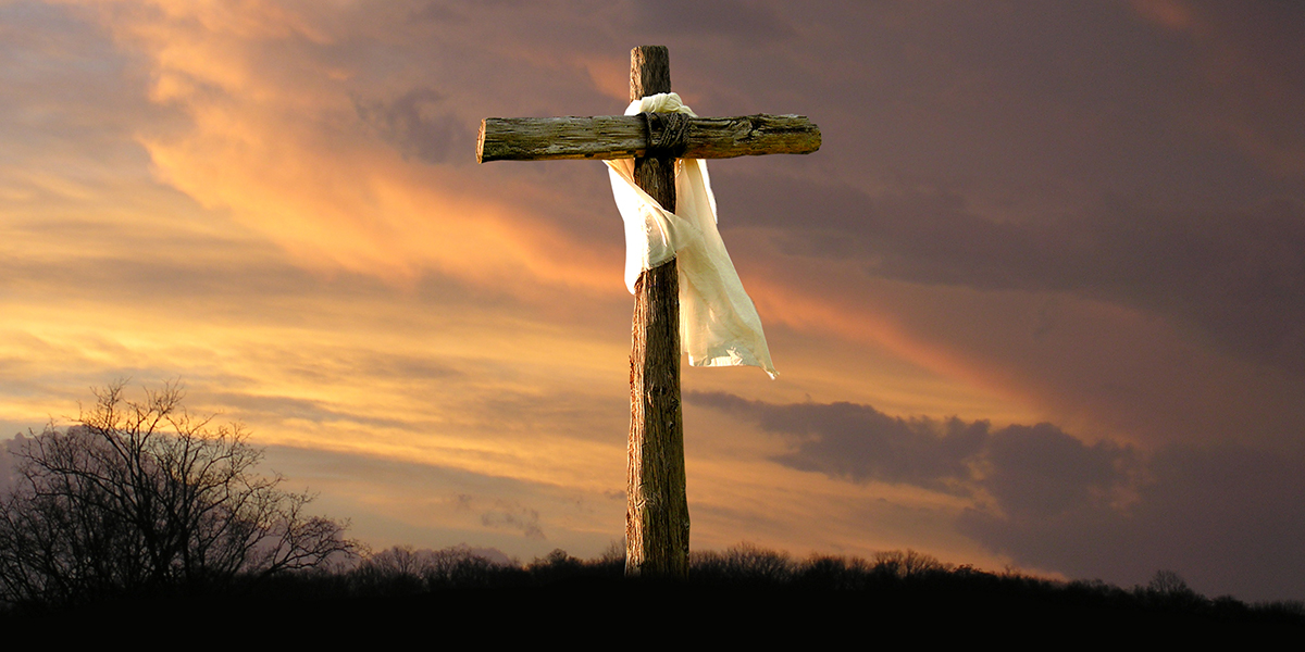 What Kind Of Wood Was The Cross Of Christ Made Of