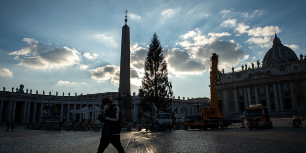 Photos: Christmas tree arrives at the Vatican