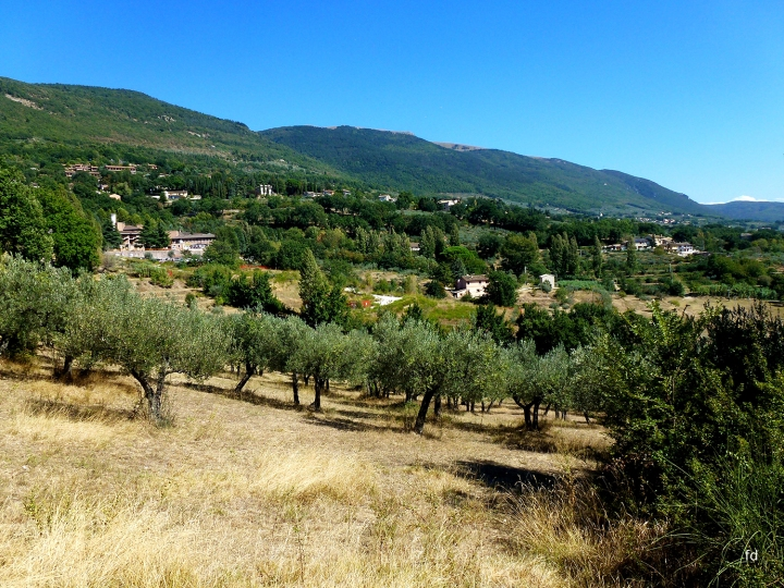 A pilgrimage in the footsteps of St. Francis