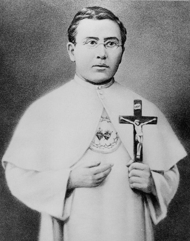 (slideshow) Rarely seen photos of St. Damien of Molokai