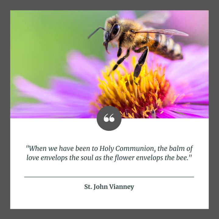 (Slideshow) 12 Important quotes on the beauty of Holy Communion