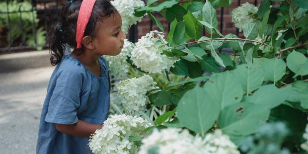 (Slideshow) 5 Reasons to join a community garden with your kids